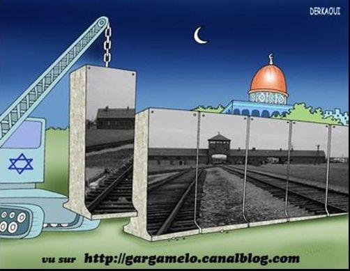 Propos antisémites et négationnistes commentant les caricatures iraniennes sur un blog internet